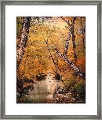 Autumn Riches 1 Framed Print by Jai Johnson