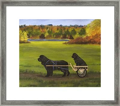 Autumn Ride Framed Print by Sharon Nummer