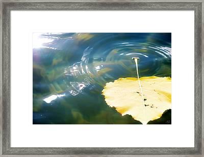 Autumn Ripples Framed Print