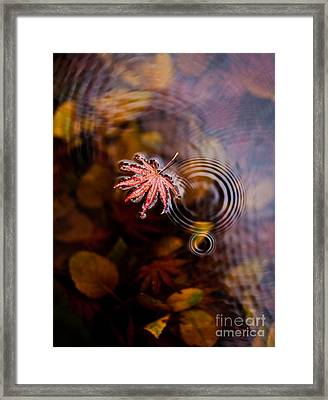 Autumn Ripples Framed Print by Mike Reid