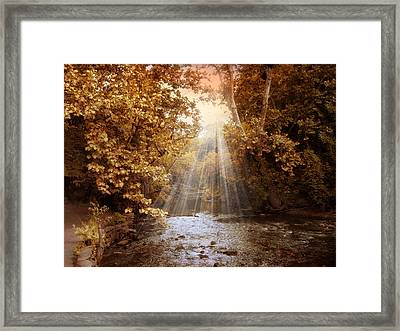 Autumn River Light Framed Print by Jessica Jenney