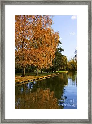 Autumn River Framed Print by Svetlana Sewell