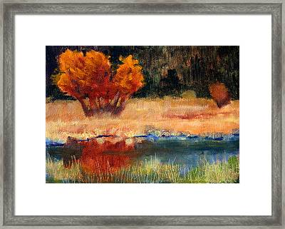 Autumn Riverbank Framed Print by Nancy Merkle