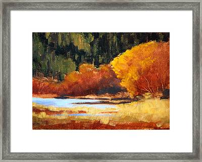 Autumn Riverside Framed Print by Nancy Merkle
