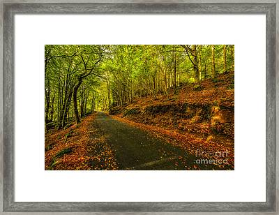 Autumn Road Framed Print by Adrian Evans