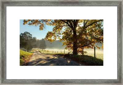 Autumn Road Framed Print by Bill Wakeley