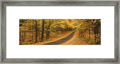 Autumn Road, Emery Park, New York Framed Print by Panoramic Images