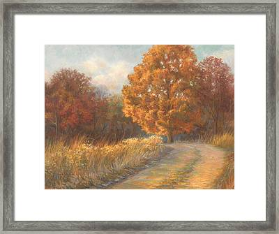 Autumn Road Framed Print by Lucie Bilodeau
