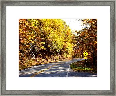 Autumn Road Framed Print by Mary Koval