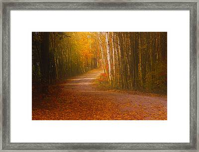 Framed Print featuring the photograph Autumn Roadway by Jim Vance