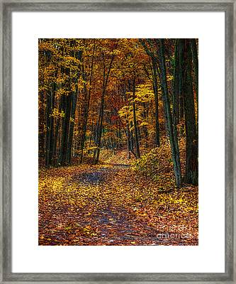 Autumn Roadway Reclamation Framed Print