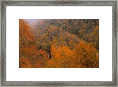 Autumn Rush Framed Print by Dan Sproul