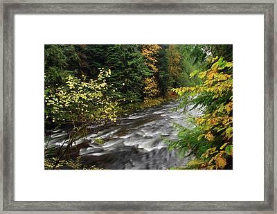Autumn, Salmon River, Oregon, Usa Framed Print by Michel Hersen