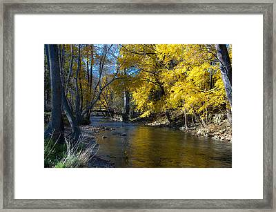 Autumn Scene At Valley Forge Framed Print by Bill Cannon