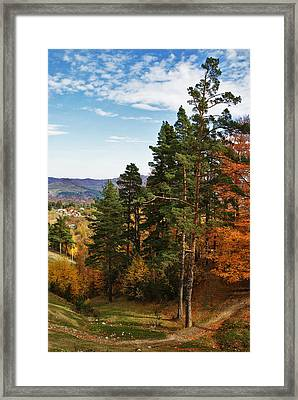 Autumn Scene IIi Framed Print