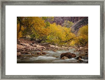 Autumn Serenity Framed Print by Andrew Soundarajan