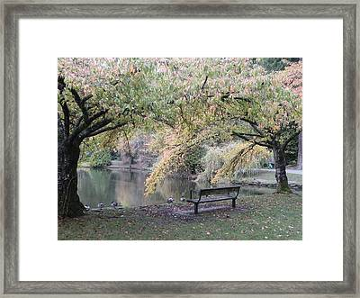 Autumn Serenity Framed Print by Brian Chase