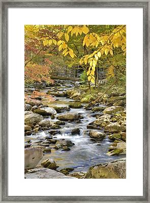 Autumn Serenity Framed Print by Mary Anne Baker