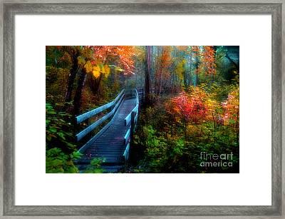 Autumn Serenity Framed Print by Tara Turner
