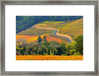 Autumn Showing Off Framed Print by Antonia Citrino