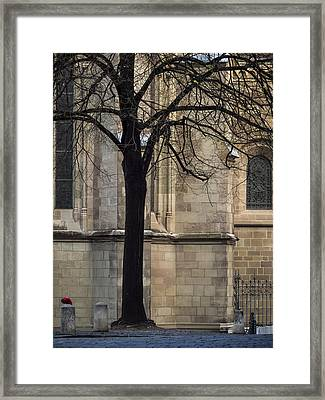 Autumn Silhouette Framed Print