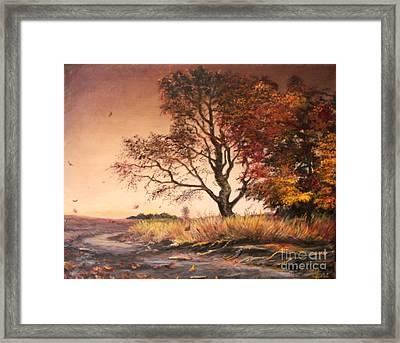 Autumn Simphony In France  Framed Print