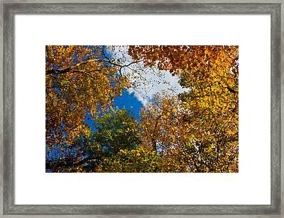 Autumn Sky Framed Print by Claus Siebenhaar