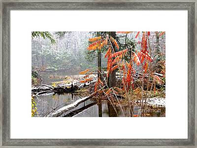 Autumn Snow Cranberry River Framed Print by Thomas R Fletcher