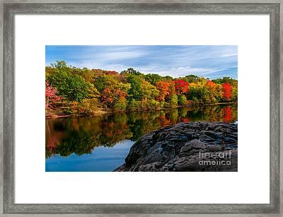 Autumn Solstice Framed Print