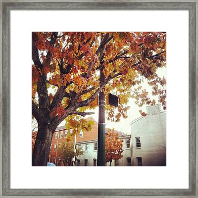 Framed Print featuring the photograph Autumn South Charles Street by Toni Martsoukos