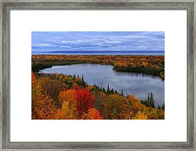 Autumn Spectacle  Framed Print by Rachel Cohen