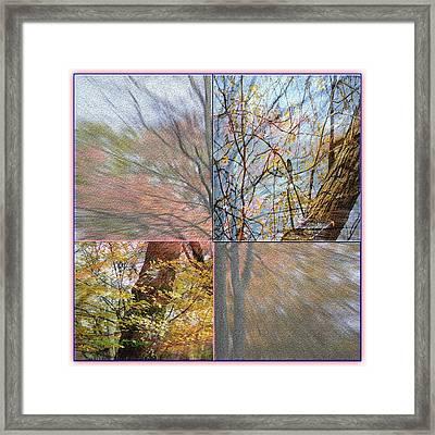 Autumn Spectrum Framed Print by Sonali Gangane
