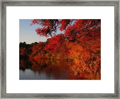 Framed Print featuring the photograph Autumn Splendor  by Dianne Cowen