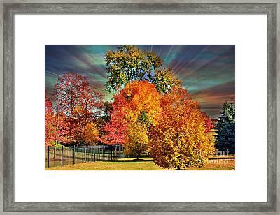 Autumn Splendor Framed Print by Judy Palkimas