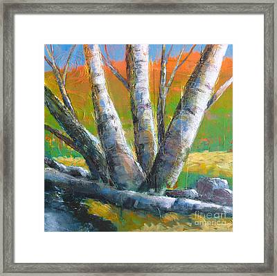 Autumn Splendor Framed Print by Melody Cleary