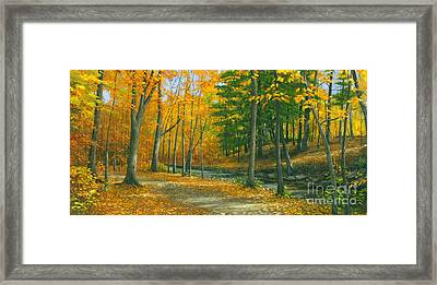 Framed Print featuring the painting Sawmill Creek by Michael Swanson