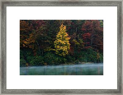 Autumn Splendor Framed Print by Shane Holsclaw