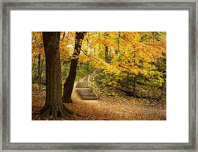Autumn Stairs Framed Print by Scott Norris