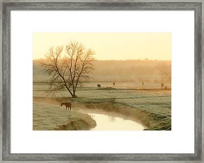 Autumn Steam Framed Print