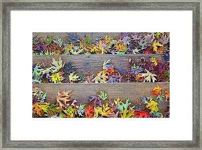 Autumn Steps Framed Print by William Schmid