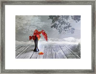 Autumn Still Life Framed Print by Veikko Suikkanen