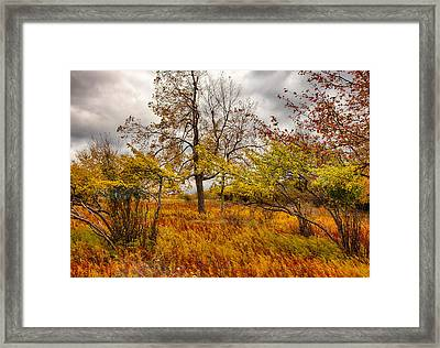 Autumn Storm At Dolly Sods West Virginia I Framed Print by Dan Carmichael