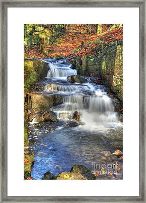 Autumn Stream Framed Print