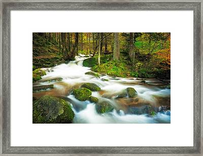 Autumn Stream Framed Print by Maciej Markiewicz