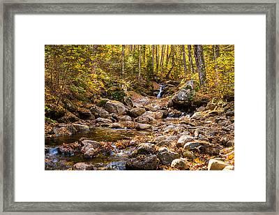 Autumn Stream Framed Print