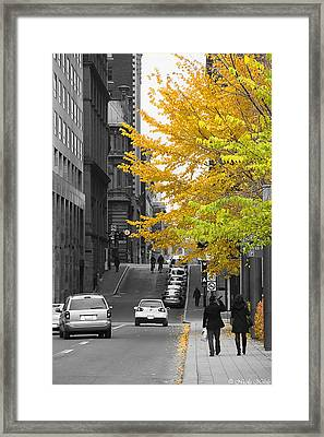 Autumn Stroll Framed Print by Nicola Nobile