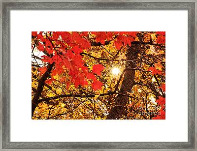 Autumn Sunrise Painterly Framed Print by Andee Design