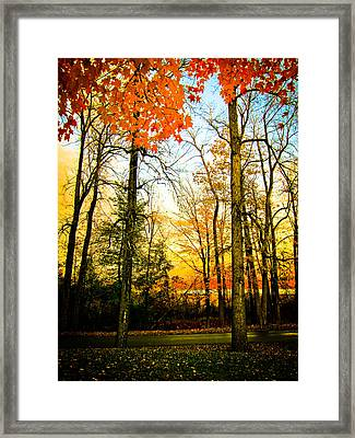 Autumn Sunset  Framed Print by Sara Frank