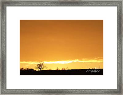Autumn Sunset With Solitary Tree Framed Print