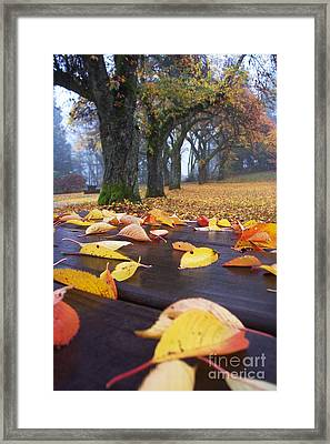 Framed Print featuring the photograph Autumn Table by Maria Janicki